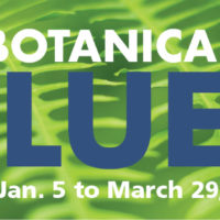 2020 Botanical Blues Concert Series